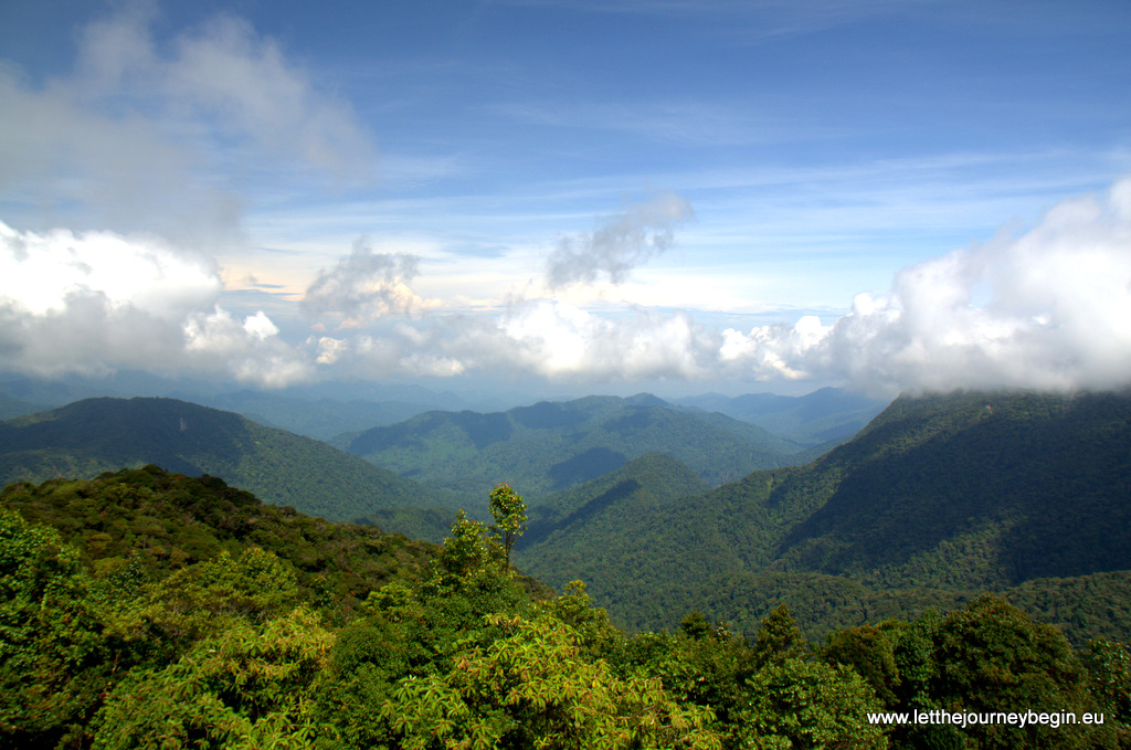 A panoramic view across the Cameron Highlands