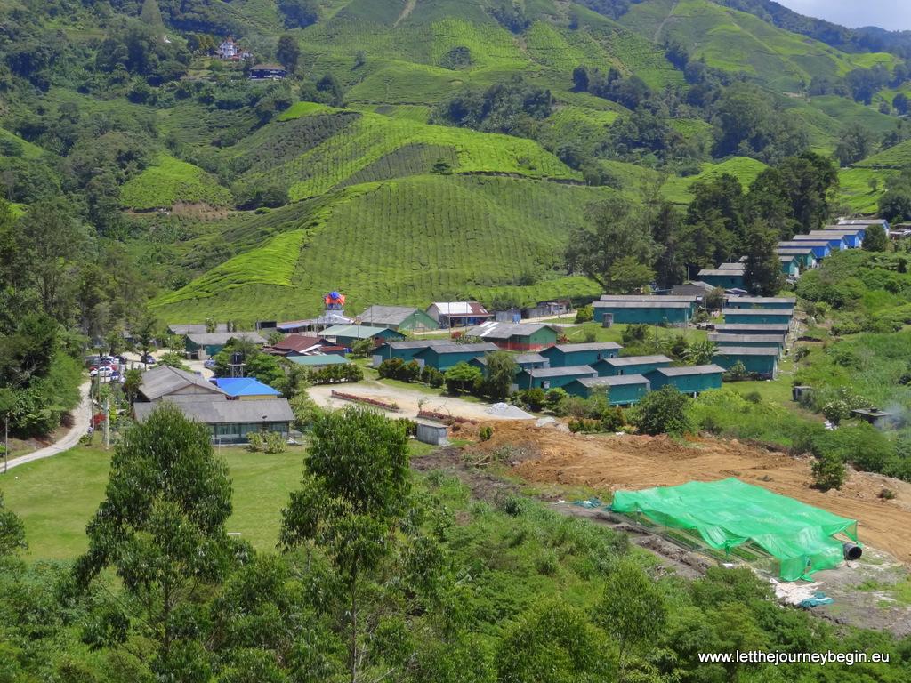 A village of tea plantation workers, Cameron Highlands