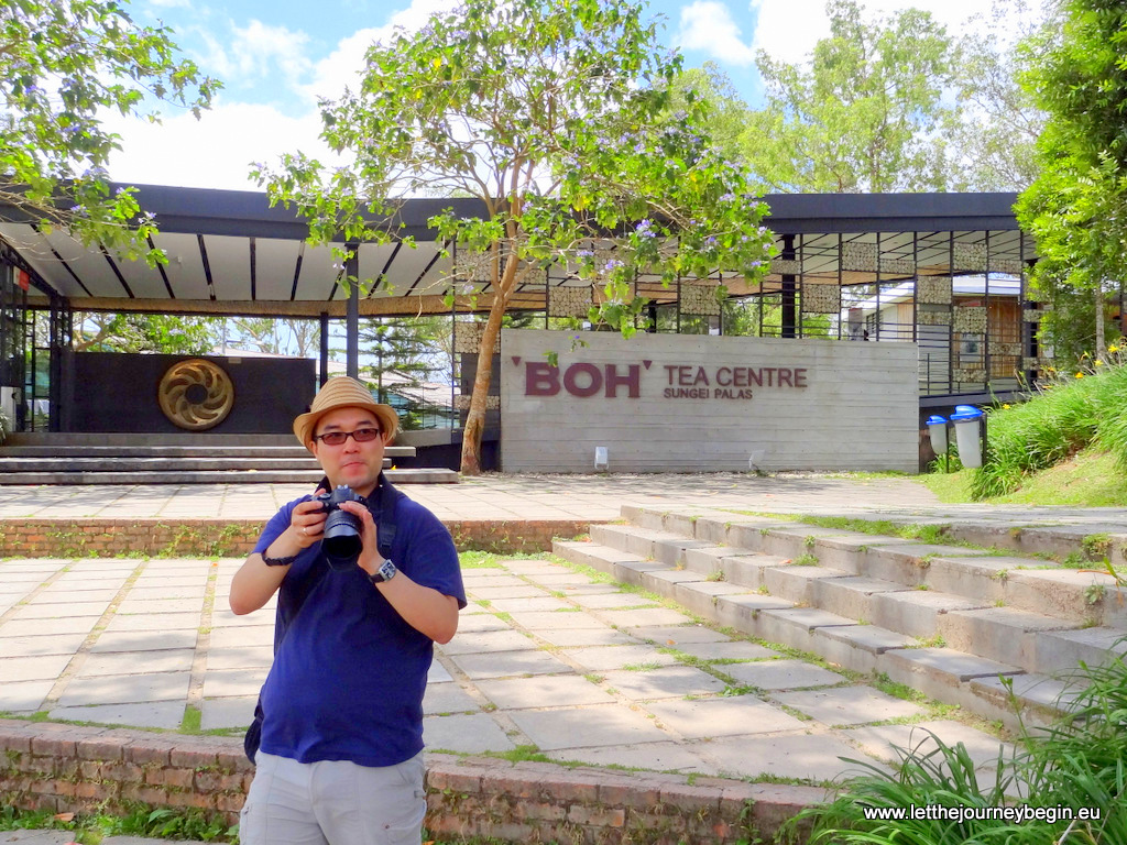 Daniel at the Boh Tea Centre