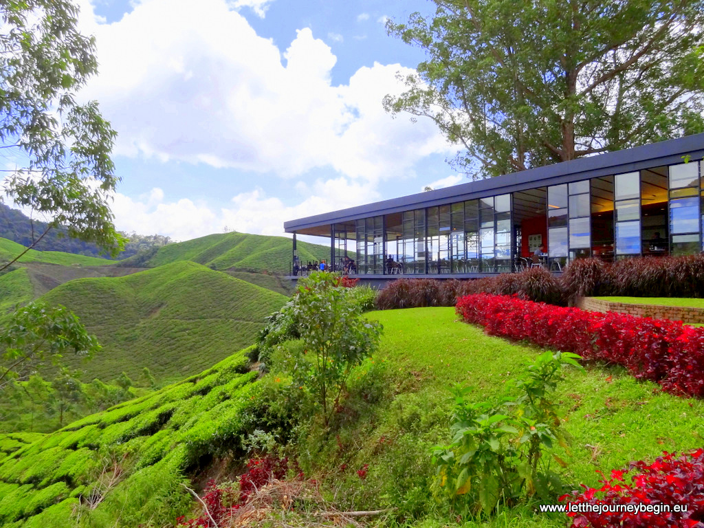 Boh tea plantation cafe at Cameron Highlands
