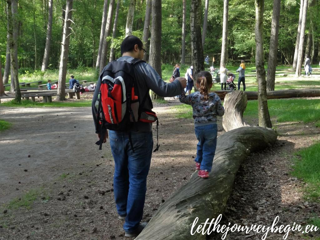 Family staycation in Hamburg - Klövensteen forest