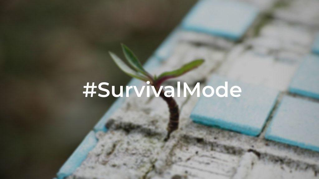 Coronavirus Chronicles week 3 #survivalmode | Let the Journey Begin